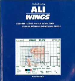 Ali wings. Study for racing car engineers and drivers